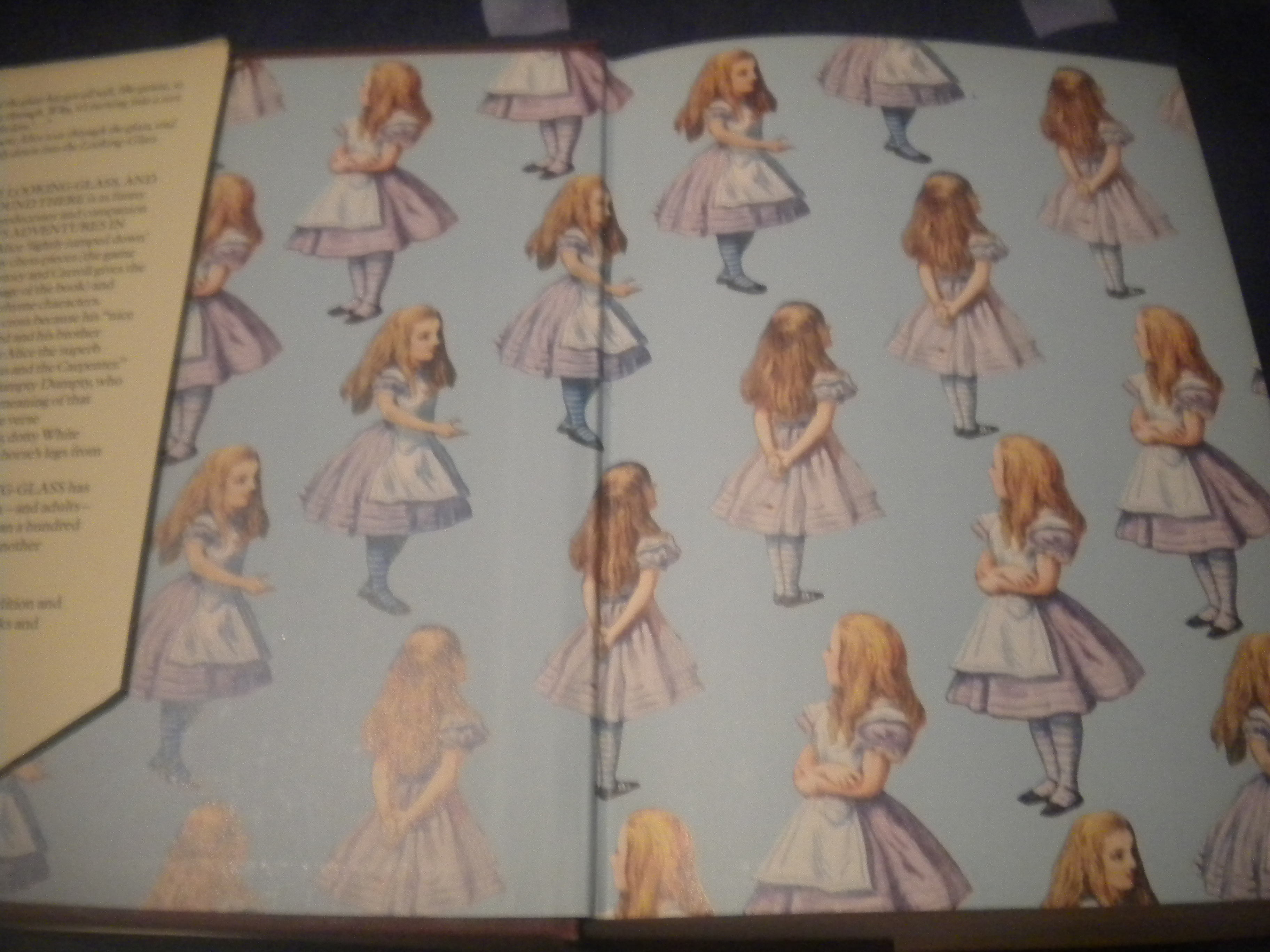 through the looking glass and what alice found there essays